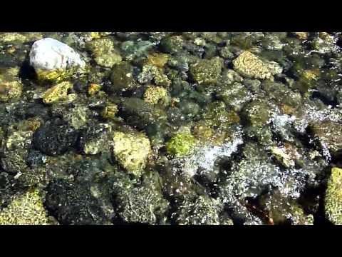 shimmering-over-rocks