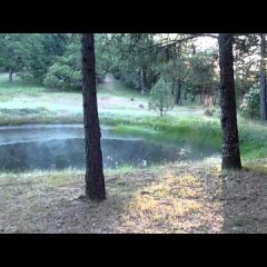 Minute Pond