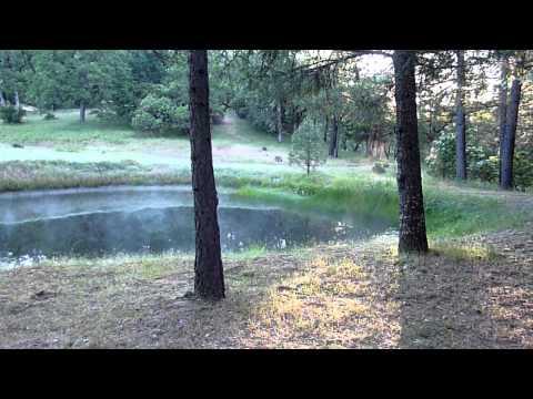 minute-pond