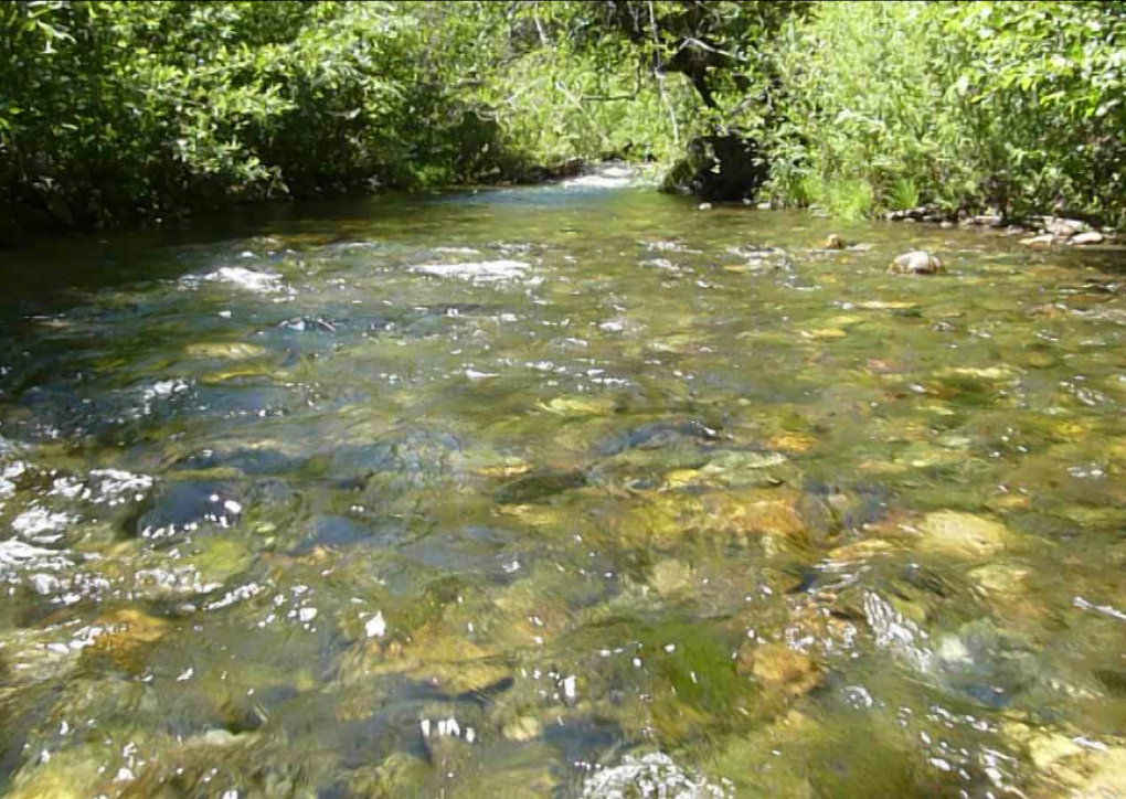 Into the Creek from greeley wells on Vimeo
