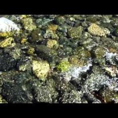 Shimmering Over Rocks