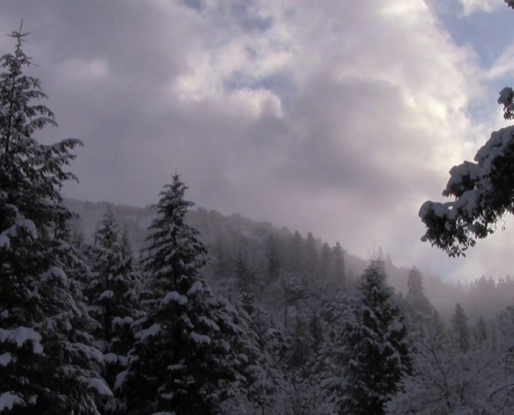 Mist Clearing Out from greeley wells on Vimeo